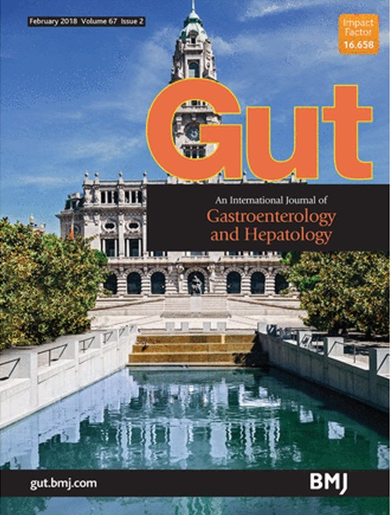 GUT-Cover image